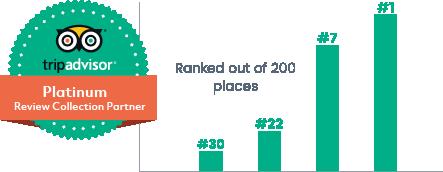 TripAdvisor-move-up-rankings
